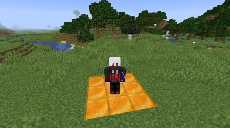 Minecraft Bal Bloğu Ne İşe Yarar